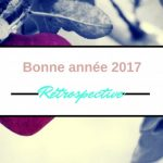 Bonne année 2017 et rétrospective 2016